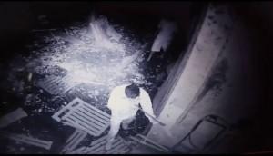 Serranópolis: Câmeras de vigilância flagram furto de leitões durante a noite -