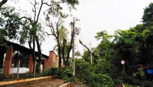 Itaipulândia: Temporal causa estragos no Balneário Jacutinga -