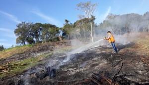 Matelândia: Defesa Civil combate incêndio ambiental em Agro Cafeeira -
