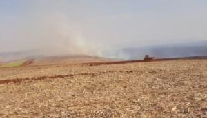 Itaipulândia: Bombeiros e agricultores combatem incêndio que atingiu lavoura e área de vegetação -