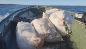 Polícia Federal apreende 300 kg de agrotóxico e essência de narguilé em Itaipulândia -