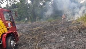 Serranópolis: Bombeiros combatem incêndio ambiental em Flor da Serra -