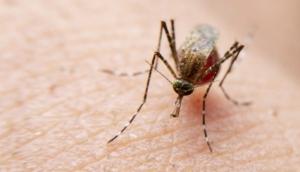 Homem morre vítima da dengue em Marechal Rondon -