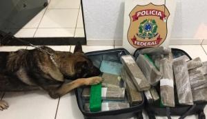 Polícia Federal prende homem em flagrante por tráfico de drogas em Céu Azul -